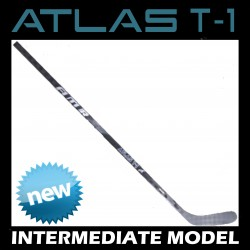 INT - ATLAS T-1